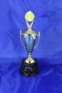 2014-1 St Patrick's  - First place - Non-profit