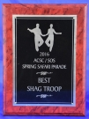 2016-1 ACSC/SOS Spring Safari Parade - Best - Shag Club Troupe